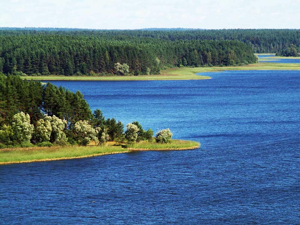 новозавидовский тверская область рыбалка